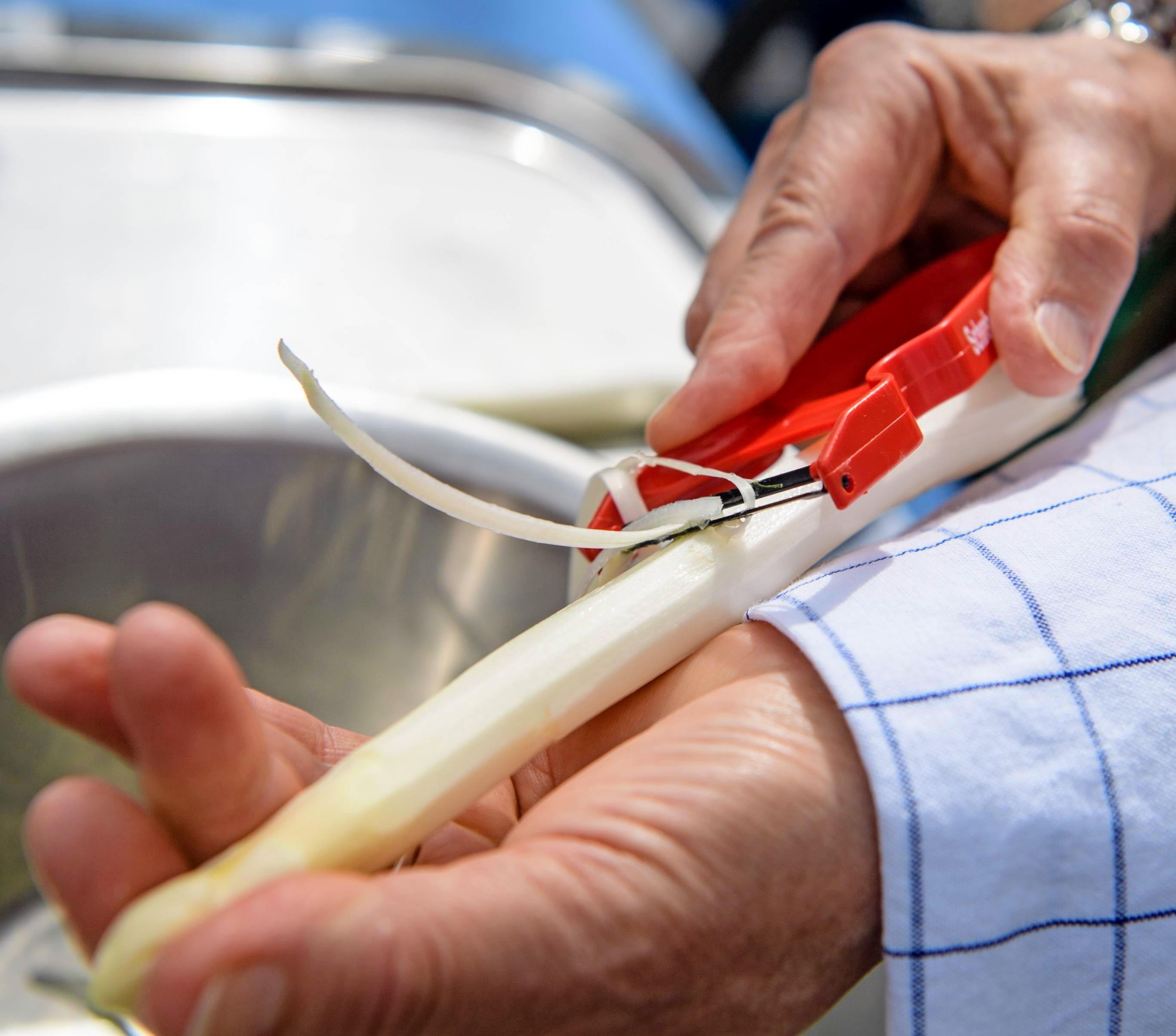 Spargel lässt sich am besten schälen, wenn man ihn in die flache Hand legt, den Schäler am Kopf ansetzt und mit leichtem Druck nach unten durchzieht. Fotos: dpa