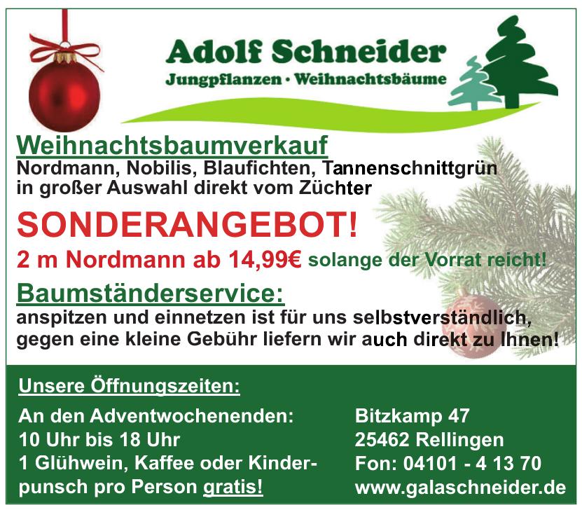 Adolf Schneider