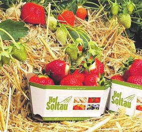 Frischer Spargel und köstliche Erdbeeren Image 1