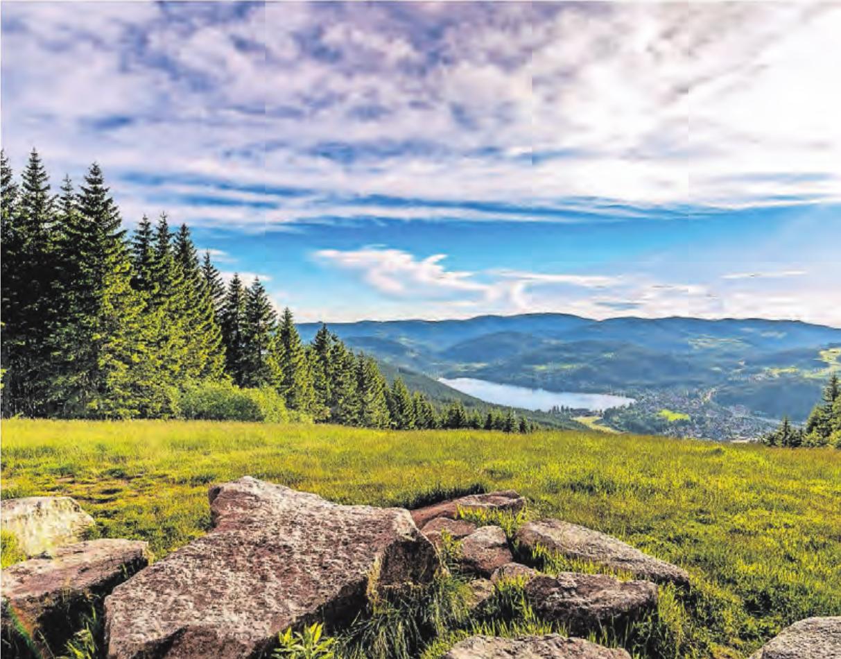 Tief unten liegt der Titisee und lockt Wanderer und Radler an seine Ufer. Fotos (3): Hochschwarzwald Tourismus GmbH