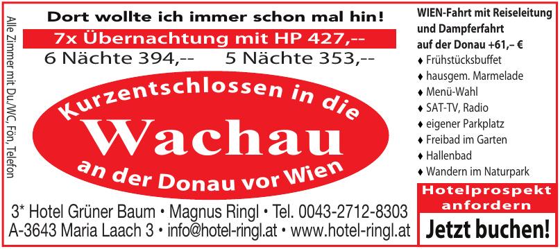 3* Hotel Grüner Baum