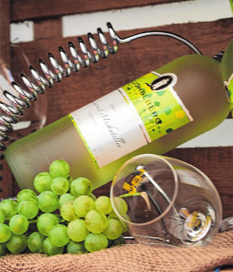 """Die """"Summer-Wine-Bar"""" lädt zum Kosten und Vergleichen neuer fruchtiger Rebsorten ein. Fotos: Veranstalter"""