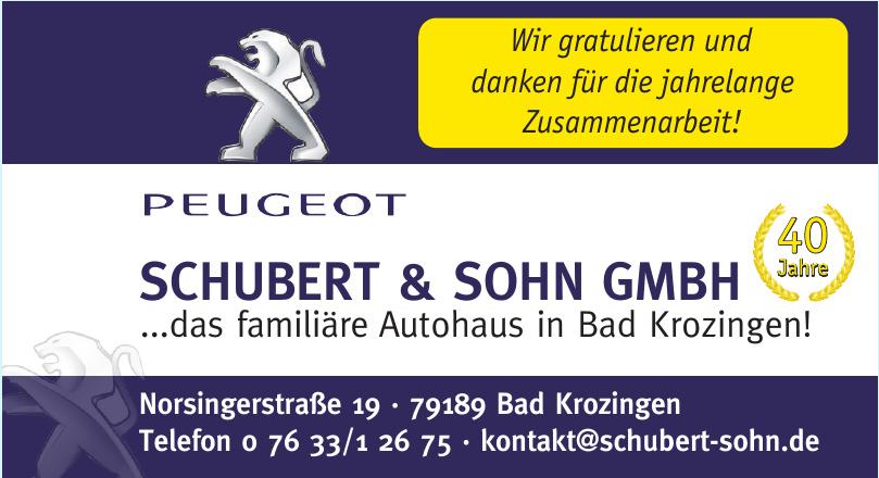 Schubert & Sohn GmbH