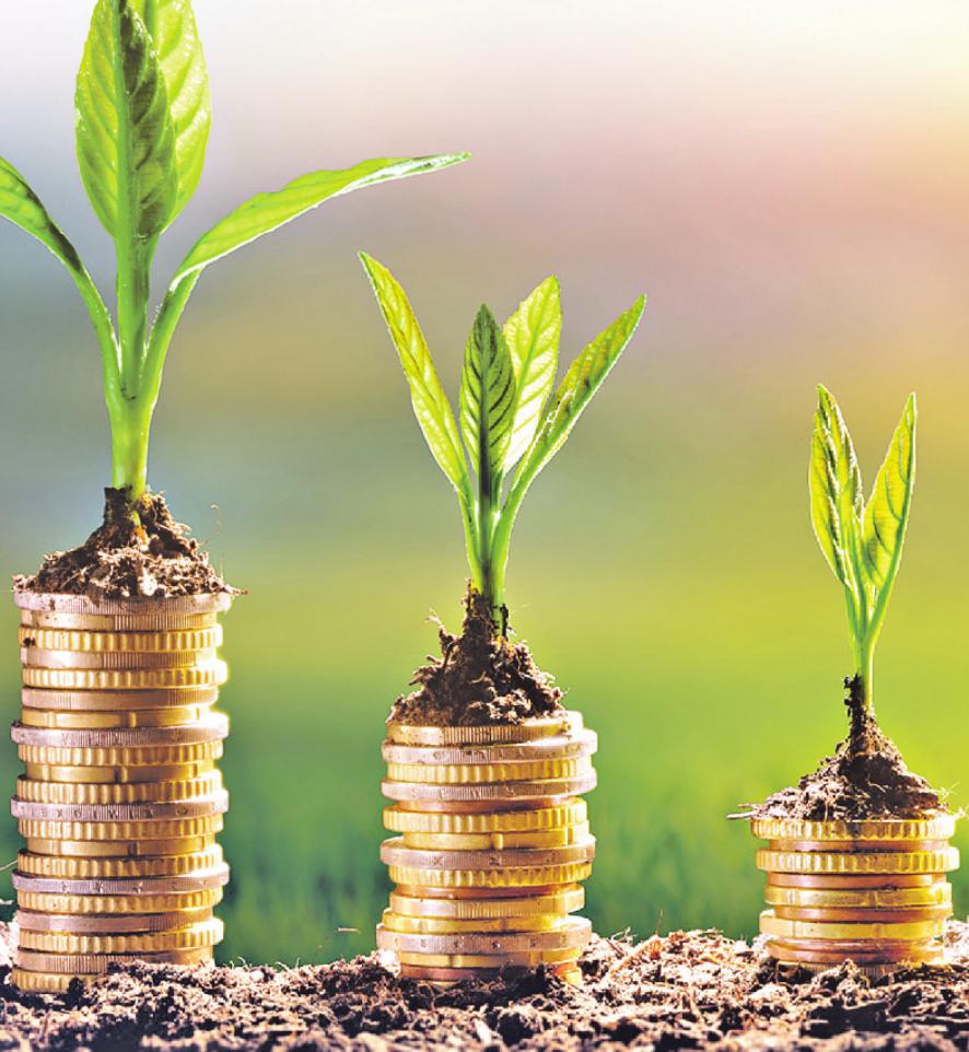 Statt auf niedrig verzinste Anlageformen zu setzen, sollten Mischfonds ins Auge gefasst werden Bild: Romolo Tavan/stock.adobe.com