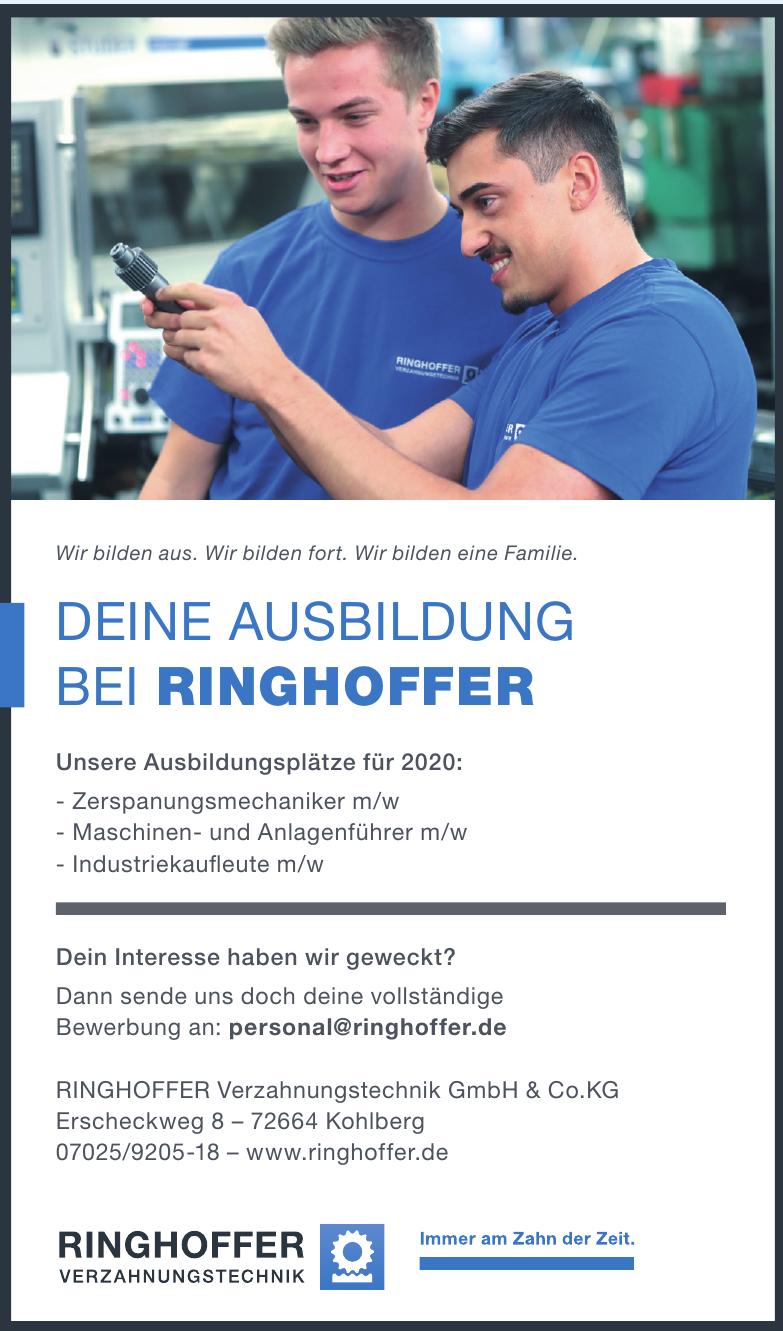 Ringhoffer Verzahnungstechnik GmbH & Co.KG