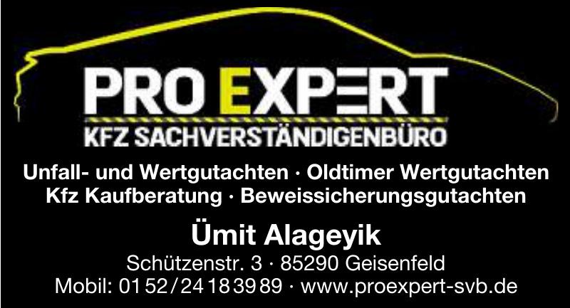 Pro Expert Kfz-Sachverständigenbüro