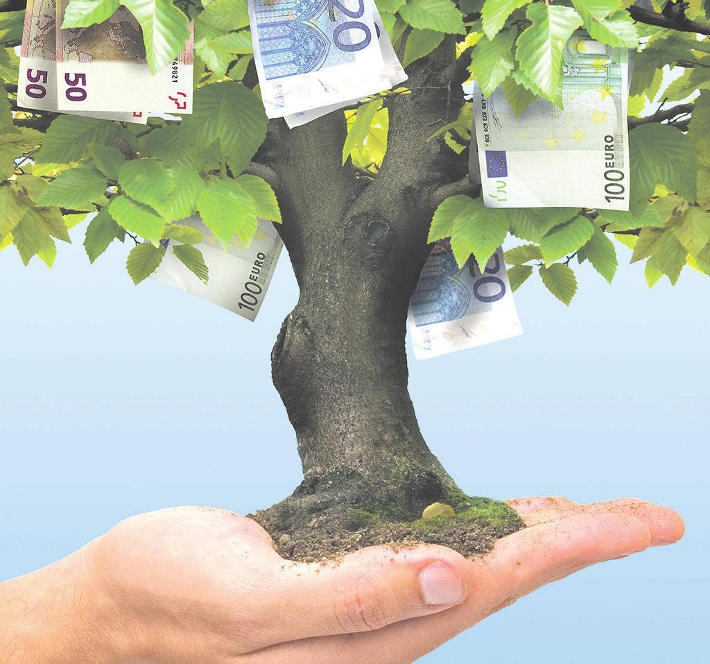 Gutes Gedeihen: Profitabilität und Nachhaltigkeit bei der Geldanlage müssen schon lange keine Gegensätze mehr sein Foto: Black Jack - Fotolia.com