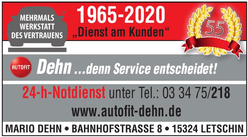 Autofit Mario Dehn