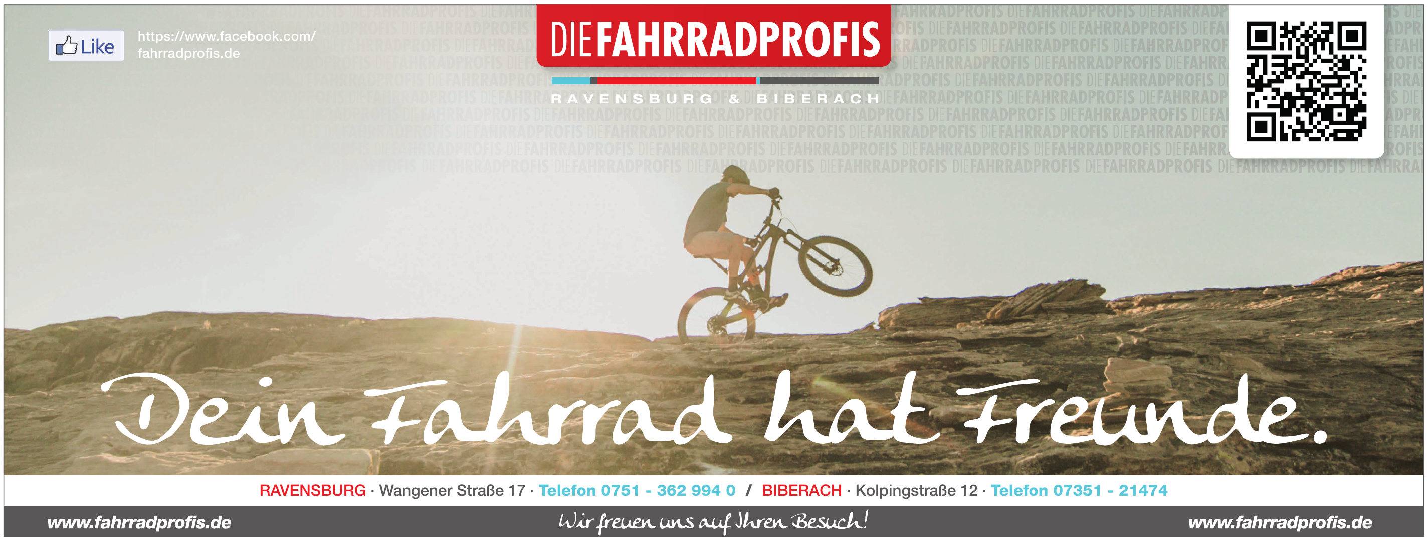 Die Fahradprofis