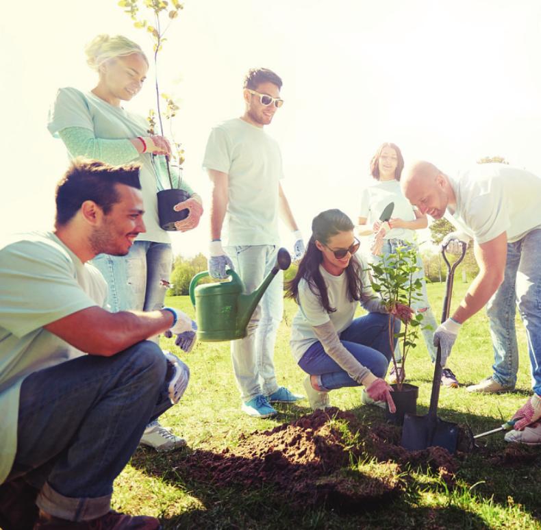 Gemeinsam Bäume pflanzen macht Spaß Foto: adobe stock