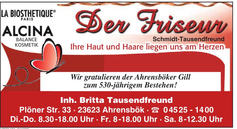 Der Friseur Schmidt-Tausendfreund