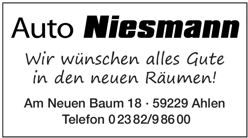 Auto Niesmann