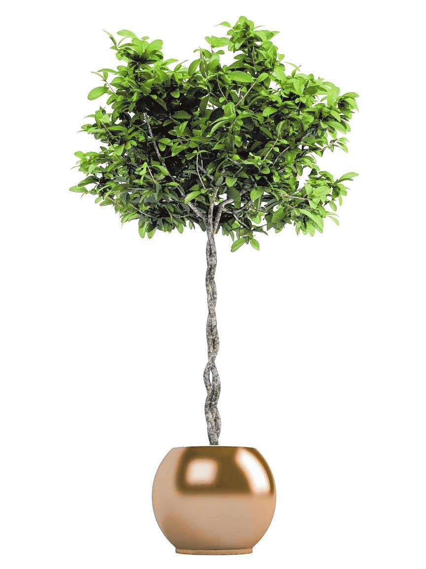 BILD: Anterovium - stock.adobe.com