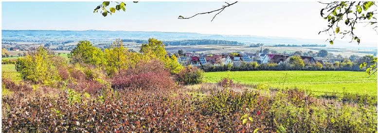 Der Obst- und Gartenbauverein Uchenhofen hat 2018 neue Bänke am Haßbergblick aufgestellt. FOTO: ULRIKE LANGER