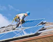 800 BUCHEN sind nötig, um dieselbe Menge CO2 zu binden, die eine 16-Kilowatt-Hausdachanlage vermeidet. Foto: Elena-Elisseeva (shutterstock)