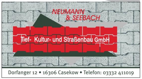 Tief- Kultur- und Straßenbau GmbH Neumann & Seebach