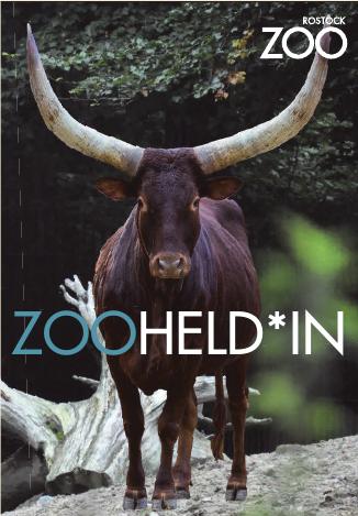 Foto: Zoo Rostock / Müller