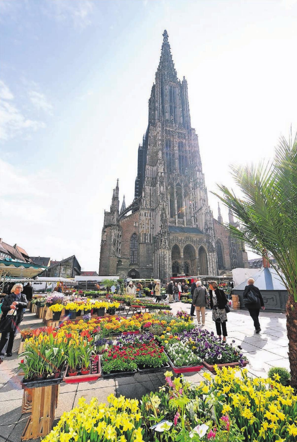 Das Ulmer Münster mit dem höchsten Kirchturm der Welt. Foto: Reinhold Mayer
