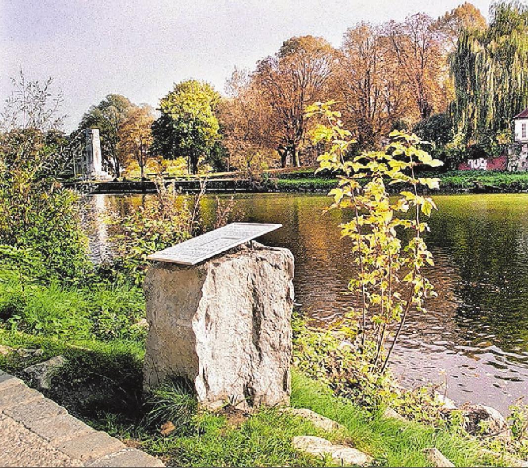 Enter füttern - von der richtigen Donauseite aus ... kosten los FOTO: PRIVAT