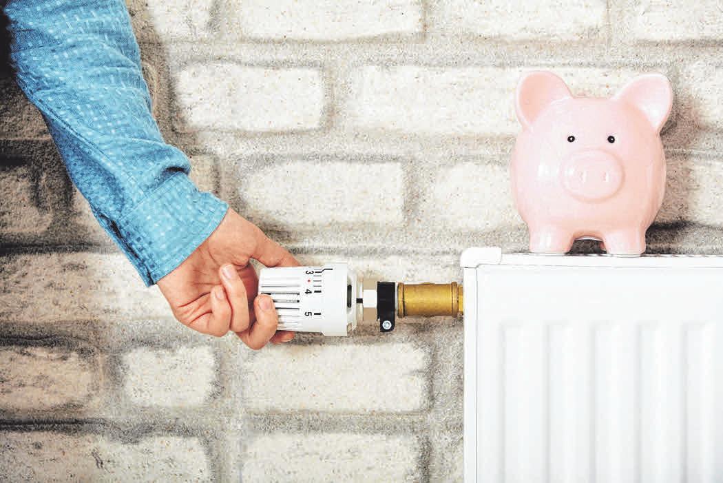 Eine gut gewartete Heizung kann bares Geld sparen. FOTO: DJD/IWO/ADOBESTOCK-ANDREY POPOV