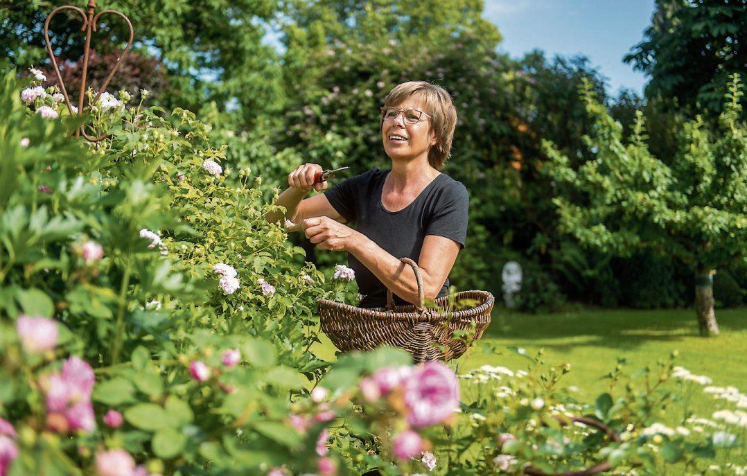 Ein satter grüner Garten ist oft arbeitsreich - denken die meisten. Es gibt aber Tricks, die etwas Mühe ersparen. Foto: Benjamin Nolte/dpa-tmn