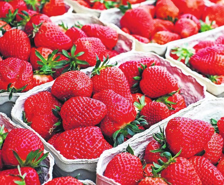 Und auch die Erdbeersaison hat begonnen. Fotos: pixabay