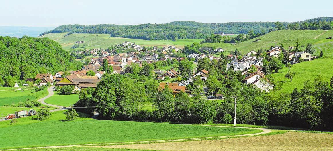 Tegerfelden liegt genau in der Mitte des Bezirks Zurzach und ist umgeben von Weinbau und Landwirtschaftsland.