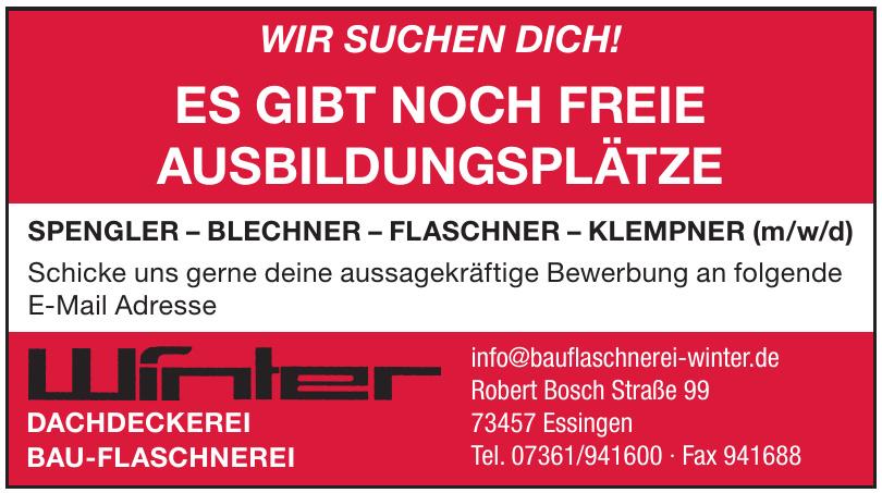 Winter Dachdeckerei Bau-Flaschnerei