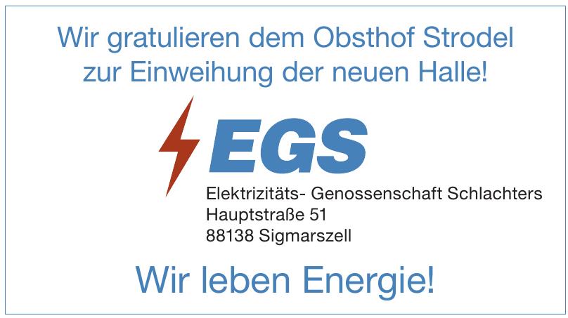 Elektrizitäts- Genossenschaft Schlachters