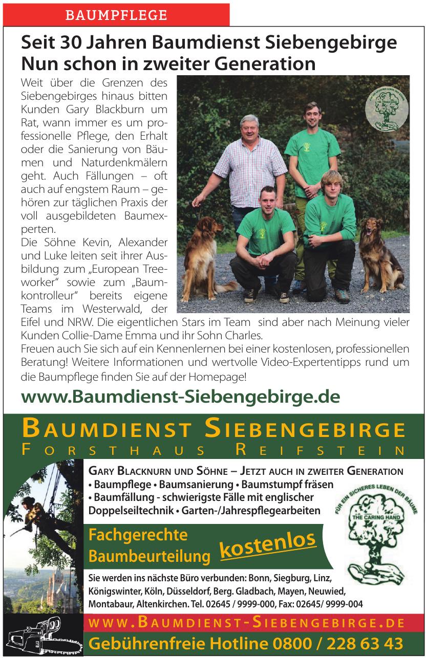 Baumdienst Siebengebirge