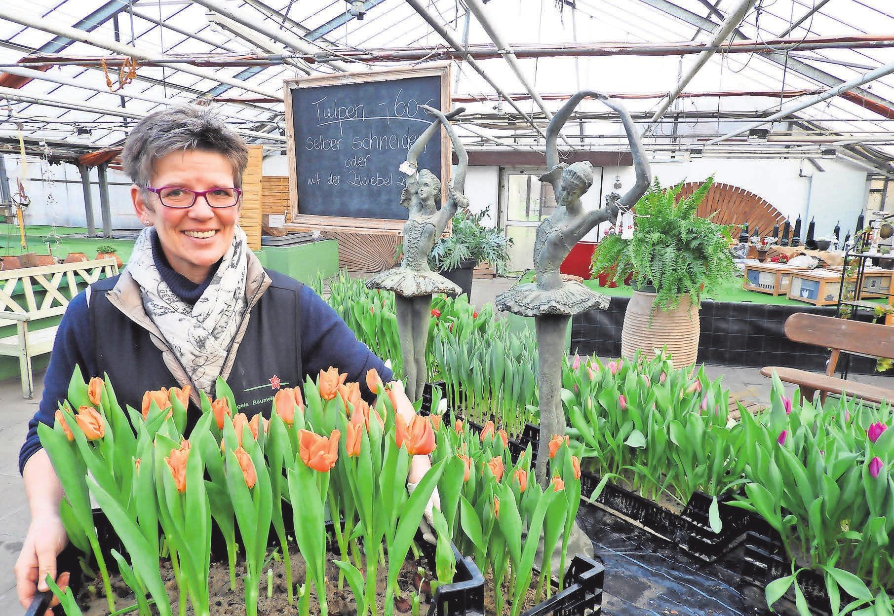 Angela Bsumek freut sich über die große Auswahl der Tulpen - zum Selbstschneiden.