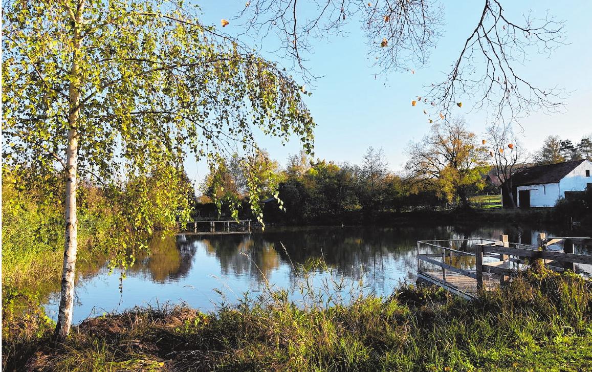 Der idyllisch gelegene See in der Dorfmitte von Hainert lädt im Sommer alljährlich Gäste aus nah und fern zum beliebten Seefest ein. FOTO: CHRISTIANE REUTHER