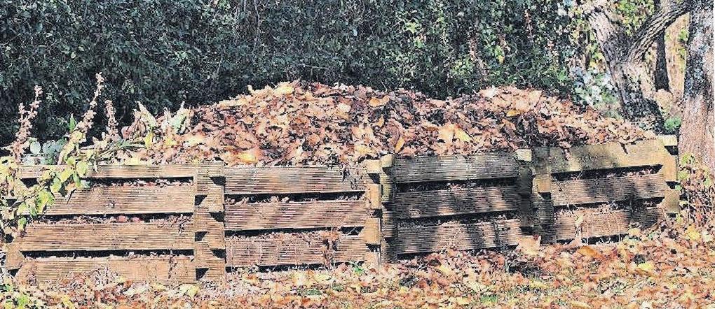 Die Erde vom Komposthaufen verbessert mit ihrem Humusgehalt die Qualität der Böden.