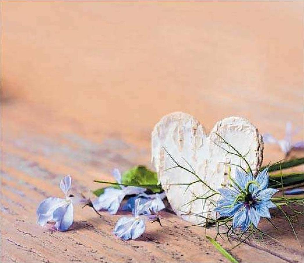 Da liegt Liebe in der Luft: Der Valentinstag ist perfekt für einen Tag voller Zweisamkeit.