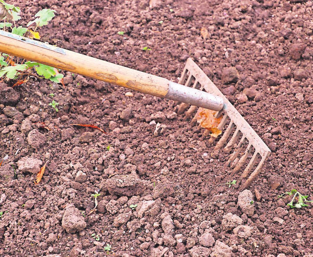 Nach einer Bodenanalyse kann man dem Boden passgenau die fehlenden Nährstoffe zuführen. Foto: Pixabay