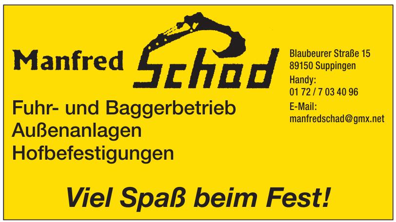 Manfred Schad