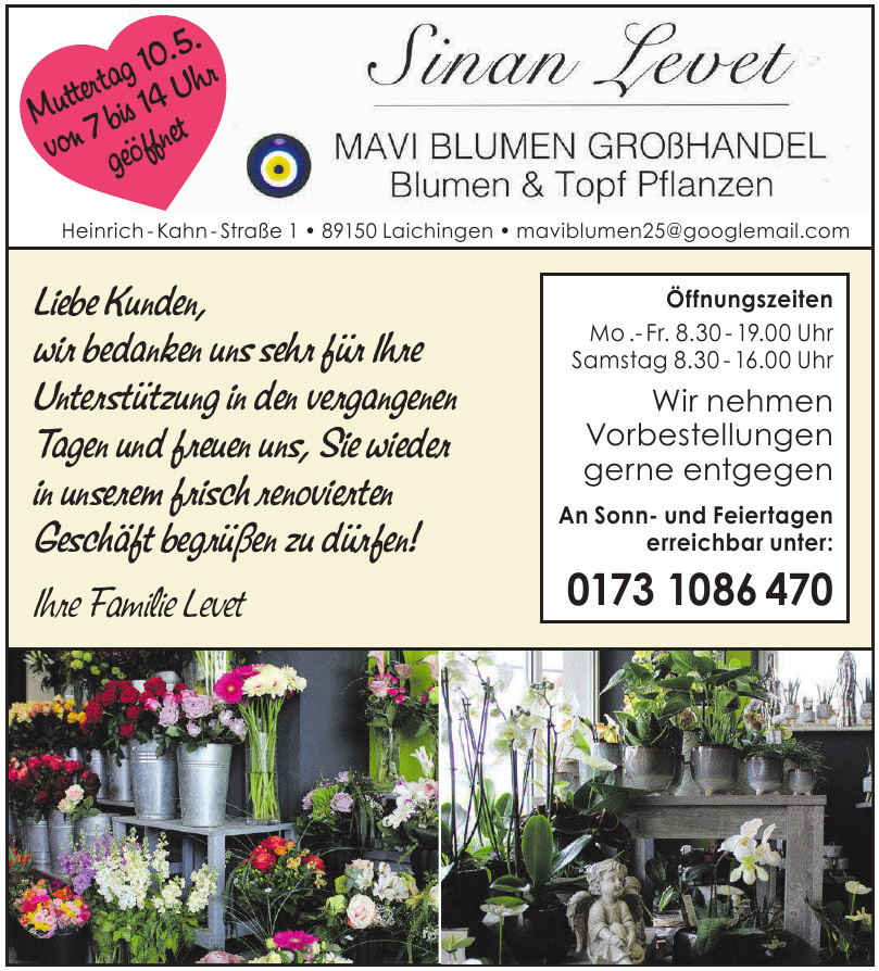 Sinan Levet - Mavi Blumen Großhandel, Blumen & Topf Pflanzen