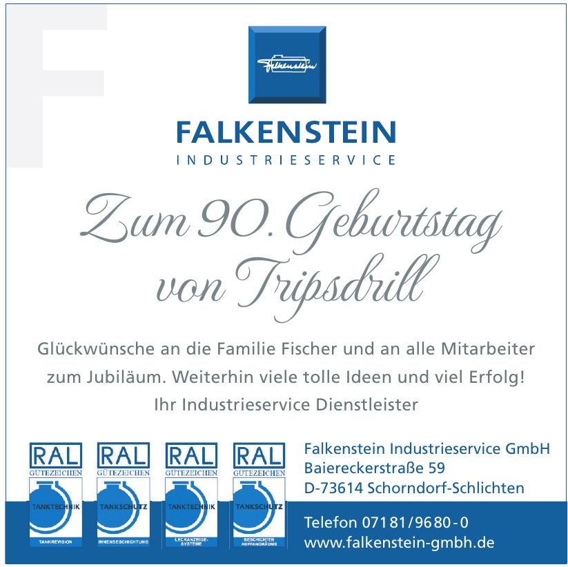 Falkenstein Industrieservice GmbH