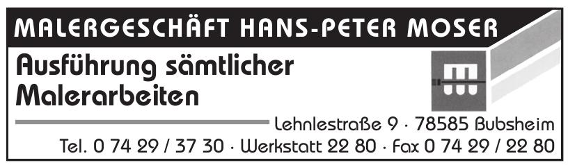 Hans-Peter Moser Malergeschäft