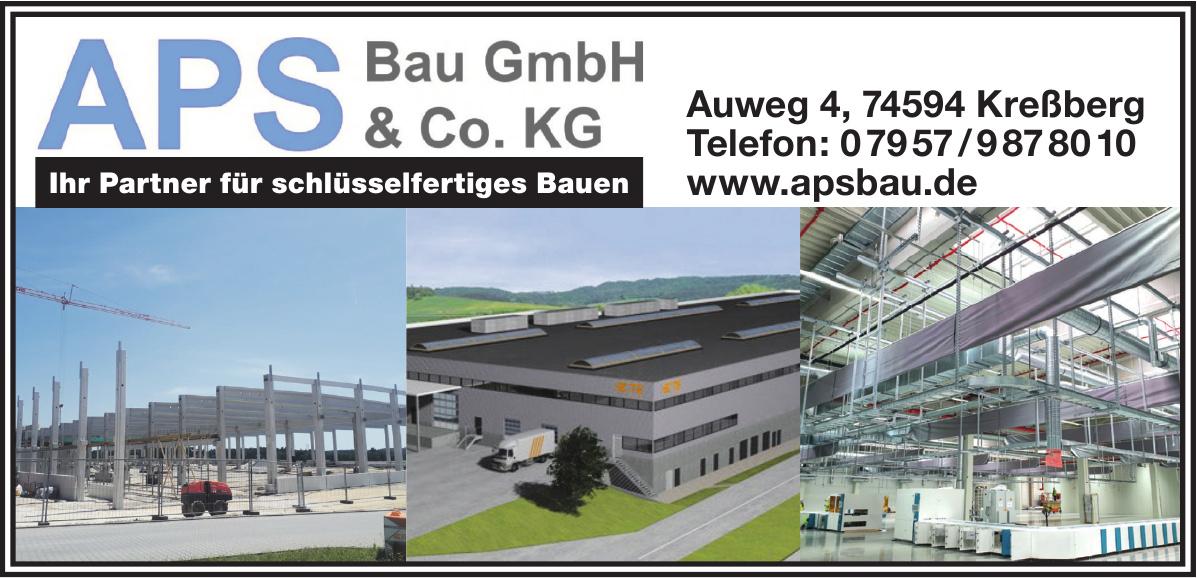 APS Bau GmbH & Co. KG