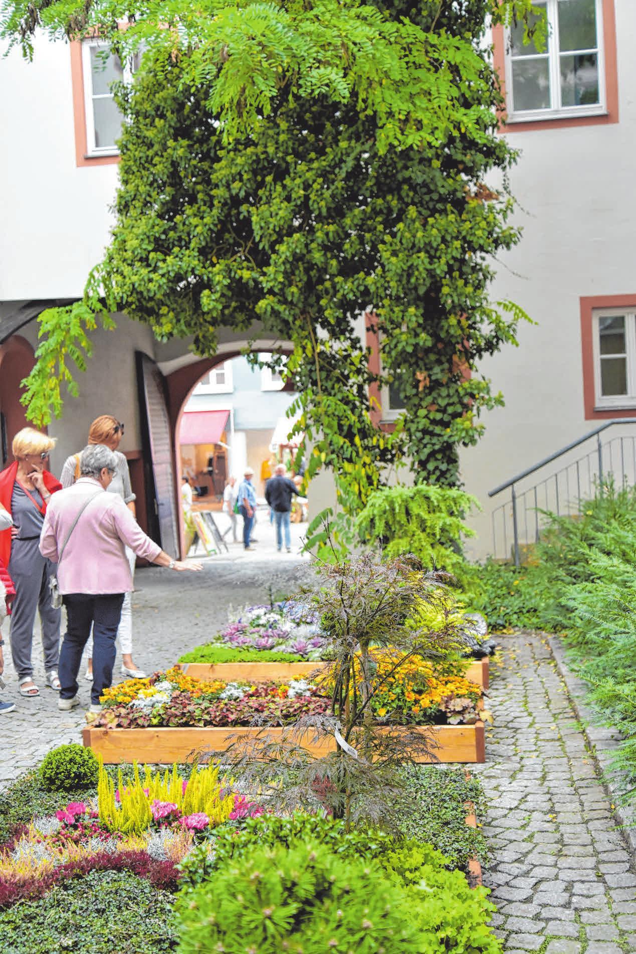 Kunstvoll bepflanzte Beete machen die Ellwanger Innenstadt zum Blumenparadies. Foto: Ursula Maier