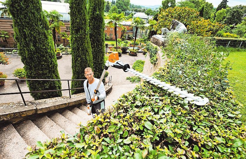 Klare Kante im Garten zeigen