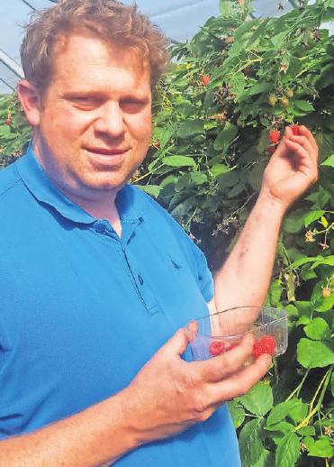 Frische Beeren bietet der Hof Lauenroth an. Foto: privat