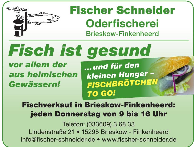 Fischer Schneider