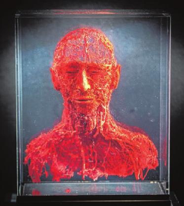 Diese Ausstellung geht unter die Haut Image 3