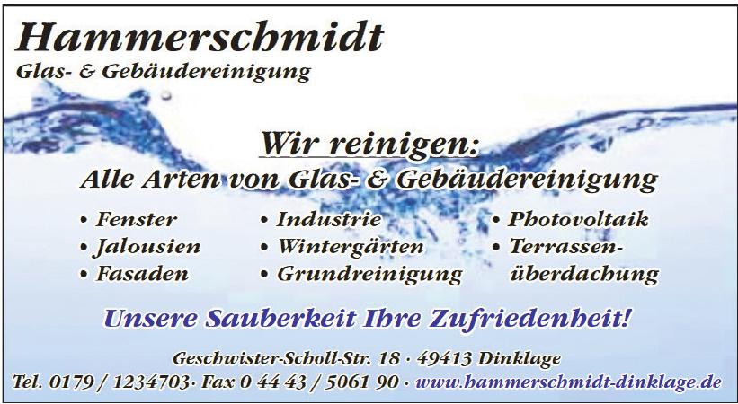Hammerschmidt Glas-& Gebäudereinigung
