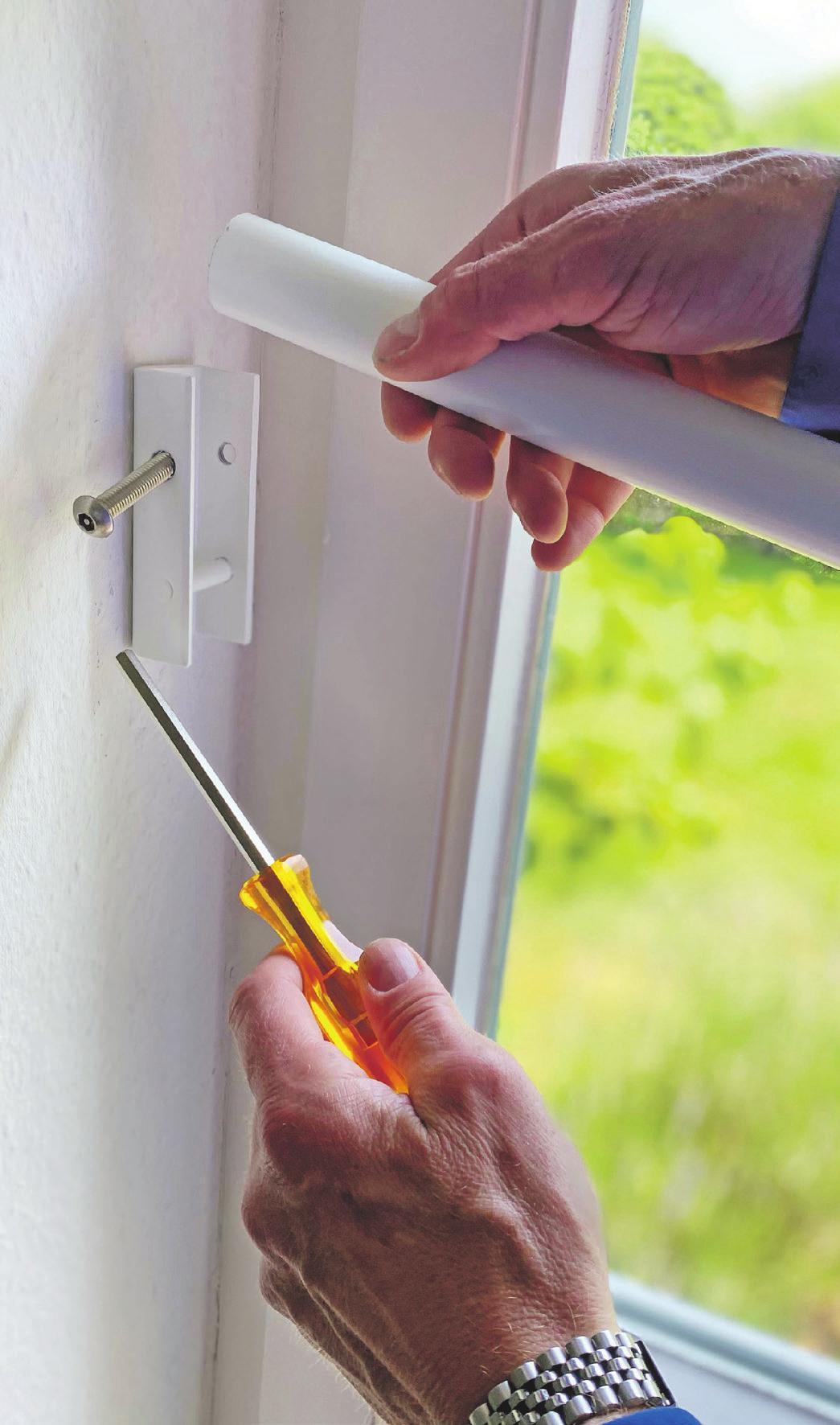 Mauerkralle und Co. schützen das Zuhause Image 3