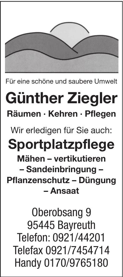 Günther Ziegler Räumen · Kehren · Pflegen