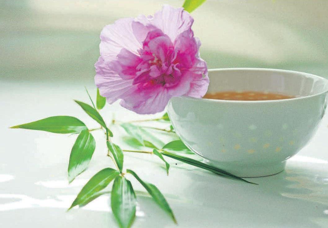 Gesundheit trinken: Cistustee beugt Entzündungen vor und schützt vor Infekten.