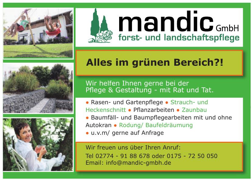 mandic GmbH